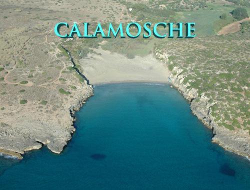 spiaggia-di-calamosche-sicilia